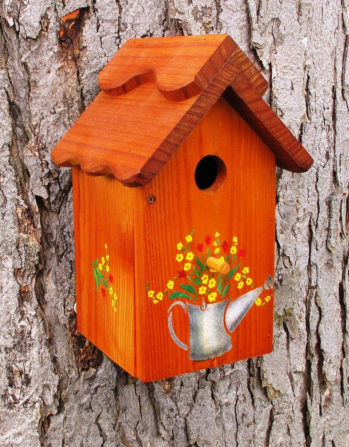 il_fullxfull.325107488 Painted Bird House Watering Can Shape Designs on soda can bird house, clay pot bird house, beehive bird house, flower pot bird house, terra cotta pot bird house,