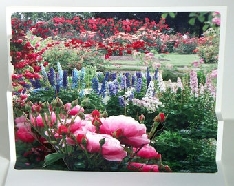 Pop up Card Rose Garden Any Occasion card Roses and Delphinium
