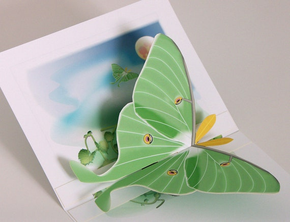 3D Luna Moth pop-up Card Any occasion with emerald green moth