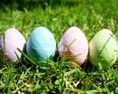 Easter Egg Hunt: Easter Card
