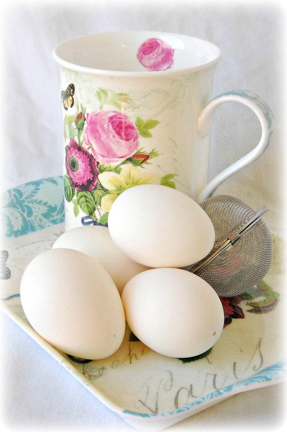 Blown Chicken Eggs - Mini White