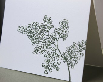 Note Card Set Maidenhair Fern