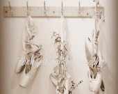 Pointe Shoes and Flowers Photograph Fine Art Print 8x10