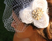 Bird Cage Bridal Veil with Pearl and Diamond Brooch