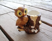 Adorable Barn Owl Toothpick Holder From Japan