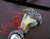 Medallion, Thaumatrope