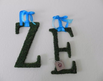 Moss Letters - Set of 2 (16'') Any Letters or Symbols Rustic Wedding Moss Monogram (Other Sizes available) A - Z