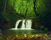 River in a forest, nature photography, high quality print, waterfall