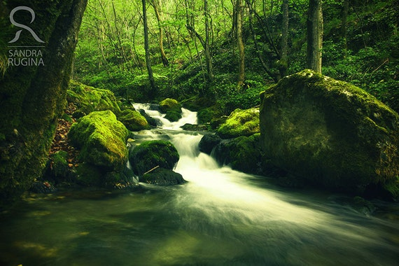 River in a forest, nature photography, fantasy forest high quality print, waterfall