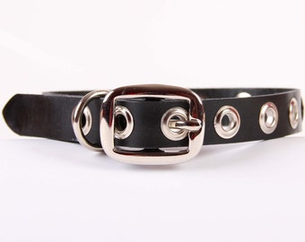 Black Leather Dog Collar with Grommets - Size XL