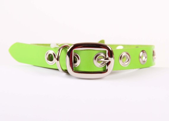 SPRING GREEN Leather Dog Collar