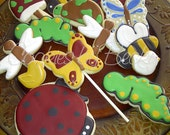 Spring is near - Assorted cookies