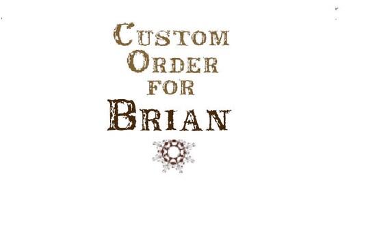 Custom for Brian