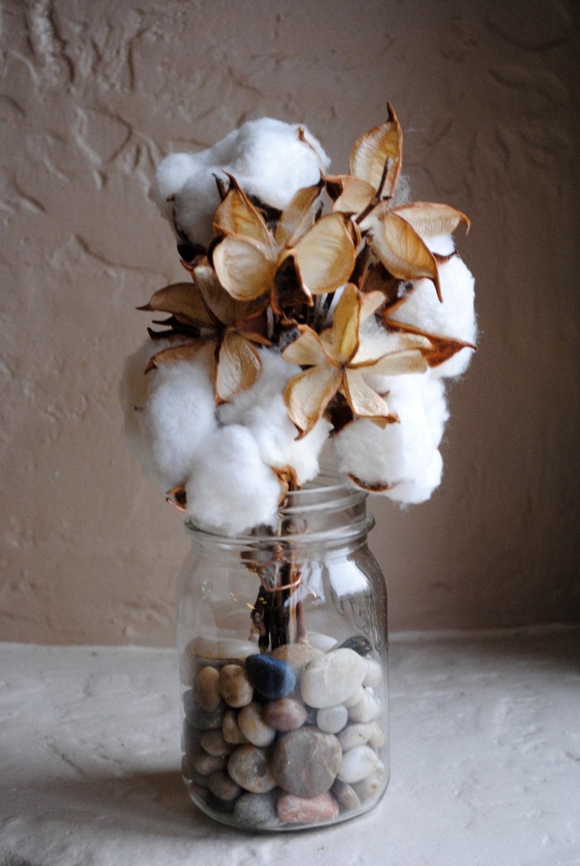 Cotton Bolls 5 And Pods For Flower Arrangements