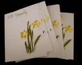 daffodil sympathy cards - set of 8