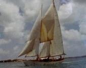 Mid Century original color photograph schooner sailboat nautical