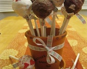 Cake Pops / Cake bonbons