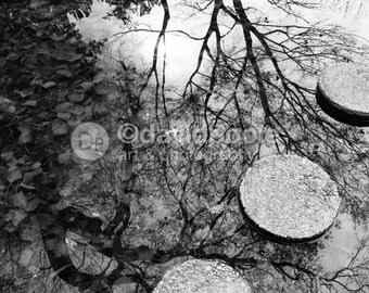 Zen Pond Reflections black and white. Photography Print 8x10 Fine Art Asian Landscape