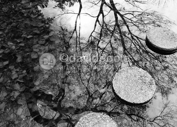 Zen Pond Reflections black and white. Photography Print 8x10 Fine Art Asian Landscape