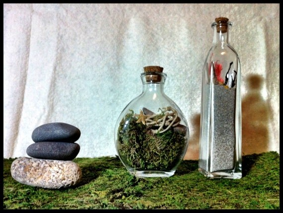 Glass Nature Jar