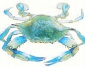 Chesapeake Bay Blue Crab Art Print