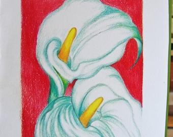 Calla Lillies Greeting Card