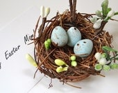 Bird Nest,  blue egg for Easter Day with flower bud and leaves.