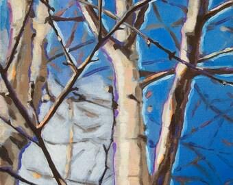 Birch Horizon - Oil Painting
