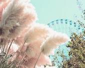 Feathered Wheel - 8x10 photograph - fine art print - carnival artwork - nursery art - whimsical pink and blue - ferris wheel