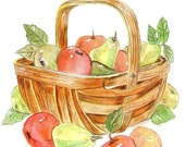 Watercolor Print of Basket of Apples and Pears - ValerieNusbaumAandD