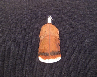 Red-Tailed Hawk Wooden Feather Pendant