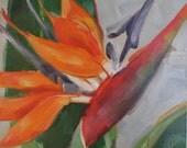 Bird of Paradise, Original Oil Painting, 6 x 6