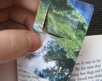 Trees and Branches Small Clip Photograph Bookmark