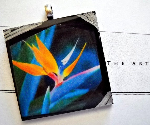 Bird of Paradise Wearable Art Resin Pendant with Silver Bail