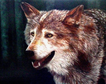 Lone Wolf, Oil Painting Reproduction by Wanda Zuchowski-Schick