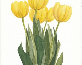 Yellow Tulip Bunch Original Watercolor