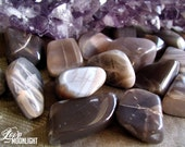 Black MOONSTONE (Med/Lrg Tumbled Stone) Awaken the Divine Feminine & Moon Goddess Energy - Intuition, Healing, Wisdom, Nurturing, Protection