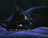 Black Cat Print A Restful Place by Irina Garmashova