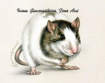 Rat ACEO print Mischievous by Irina Garmashova