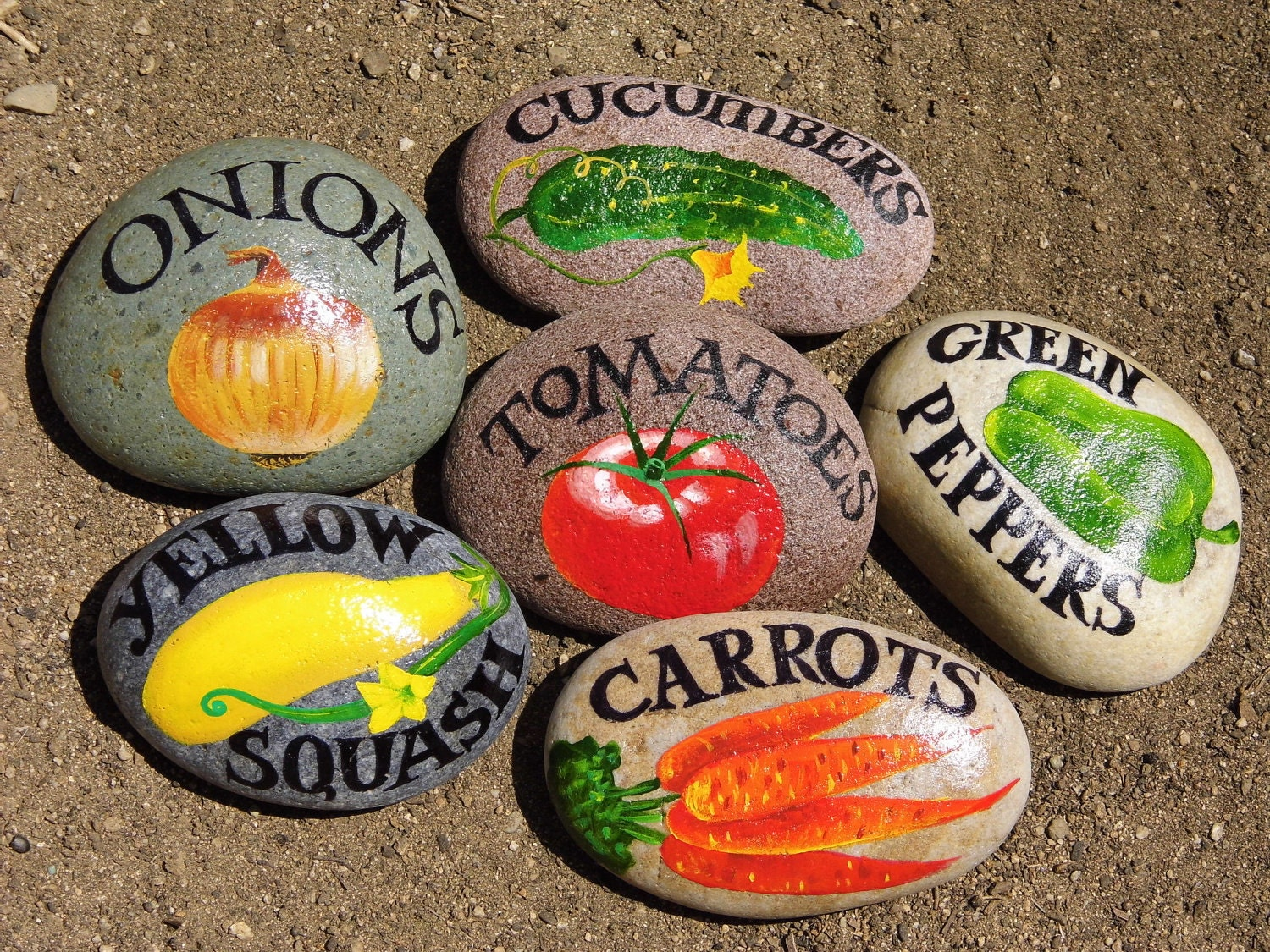 Mark Your Garden With Vegetable Signs On The Rocks Gift Price