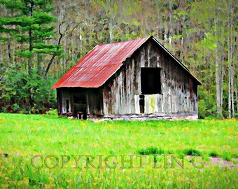 North Carolina Abandoned Shack Meadow Forest 12x18 Limited Edition Print