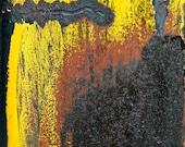 Abstract Fine Art Photography Yellow Orange Brown, Sunbird - 8x12
