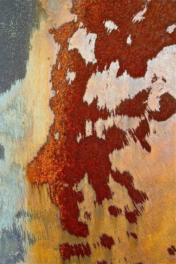 Abstract Fine Art Photography Orange Grey Still Life Color Photo - Centaur - 8x12 Abstract