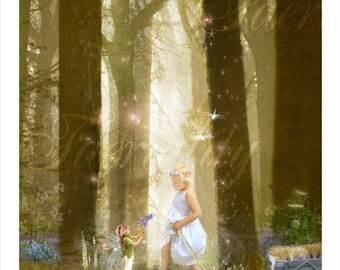 Fairy Fine art Print      Chance Encounter  By Charlotte Bird