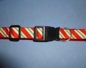Festive Christmas Dog Collar with peppermint stripes