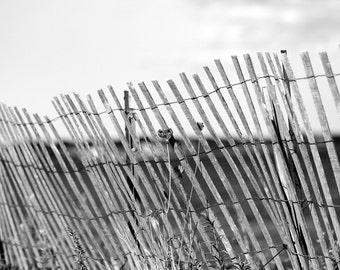 Beach Fence 8 x 10 Print
