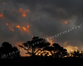 Clouds Gray Grey Orange Black Stormy Sunrise Gold Fiery Sky signed & matted print