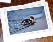 Brown Yellow Downy Baby Duckling, Bird Photography, All Occasion, Blank Greeting Card, Photo Card