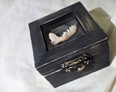 Real Jawbone engagement ring trinket box / Goth macabre wedding