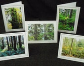 Forest Beauties 2 - Five Card Collection